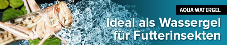 Aqua - Watergel - Granulat