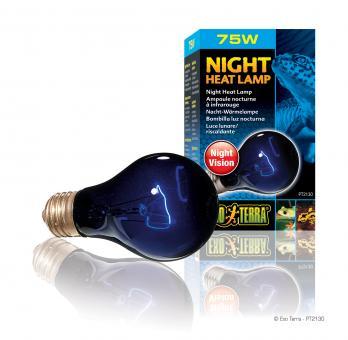 Exo Terra Mondscheinlampe  NIGHT HEAT LAMP 75 Watt