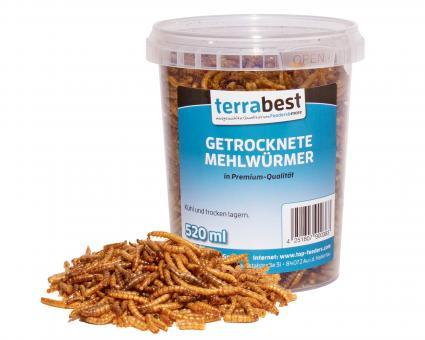 520ml getrocknete Mehlwürmer Premium Qualität