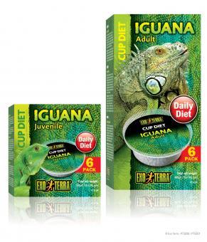 Exo Terra CUP DIETS - junge Leguane