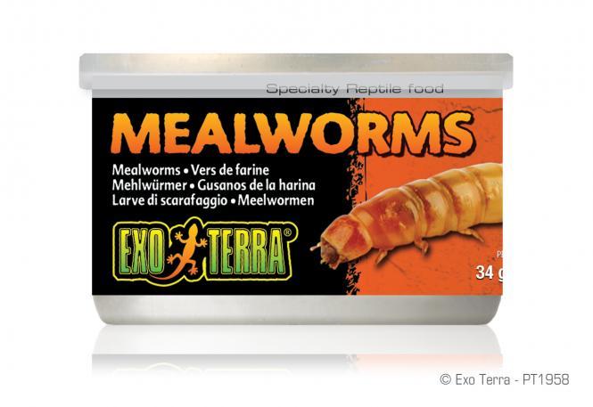 Exo Terra Dosenfutter Mehlwürmer
