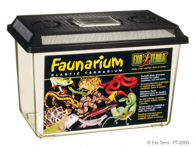 Exo Terra Fauna Box groß
