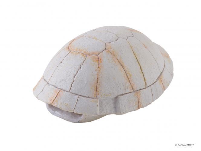 Exo Terra  Schildkröten Skelett